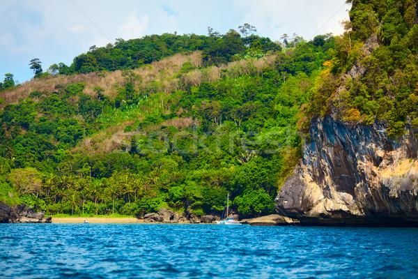 Deniz ada orman krabi Tayland plaj Stok fotoğraf © PetrMalyshev
