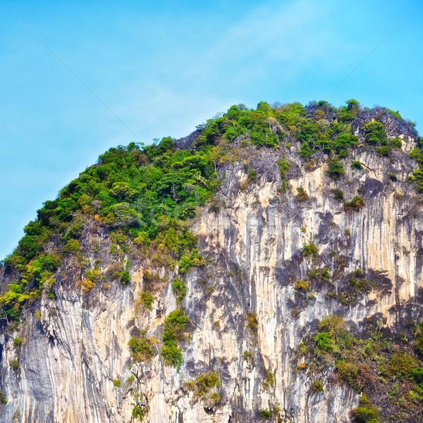 тайский гор зеленый деревья Краби Таиланд Сток-фото © PetrMalyshev