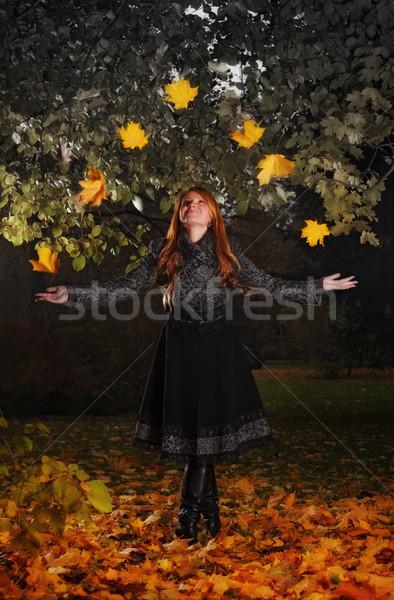 girl juggling leaves in autumn park Stock photo © PetrMalyshev