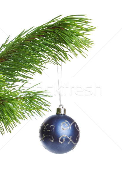 blue decoration ball Stock photo © PetrMalyshev