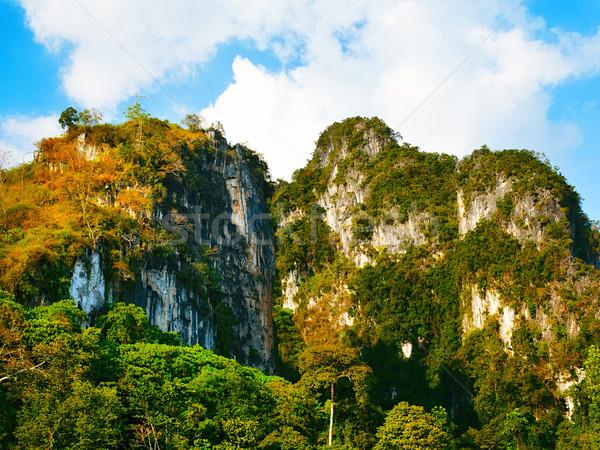 Thai hegyek zöld fák Krabi Thaiföld Stock fotó © PetrMalyshev