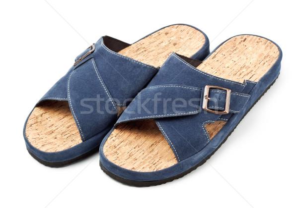 Twee Blauw slippers geïsoleerd witte schoenen Stockfoto © PetrMalyshev