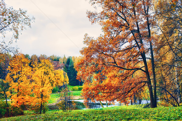 осень пейзаж парка реке Blue Sky небе Сток-фото © PetrMalyshev
