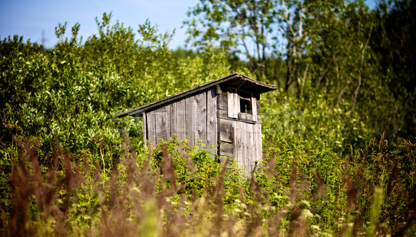 Old Outhouse Waiting For You Stock photo © PetrMalyshev