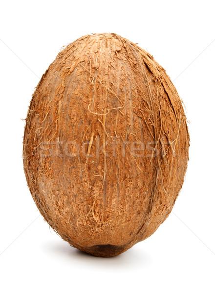 coconut isolated on white Stock photo © PetrMalyshev