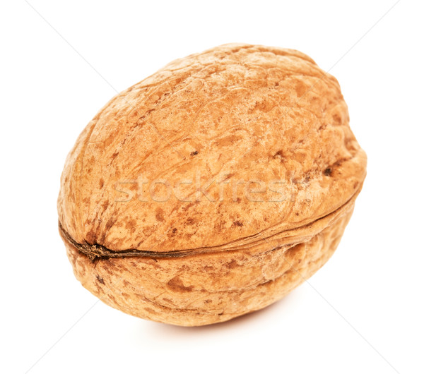 Single Walnut In A Shell Stock photo © PetrMalyshev