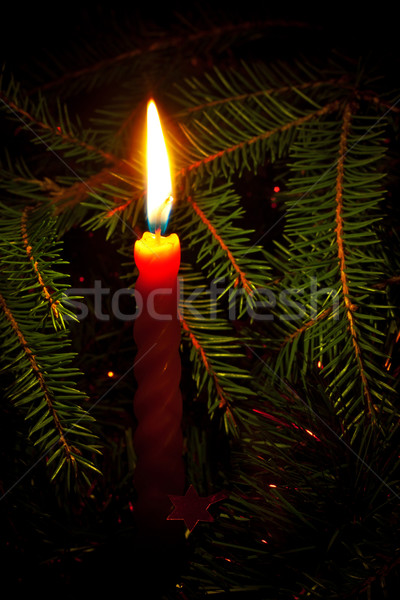 candle on fir branches Stock photo © PetrMalyshev