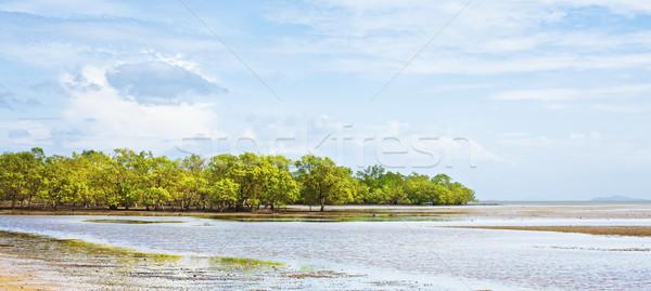 Brzegu niski fala morza Tajlandia niebo Zdjęcia stock © PetrMalyshev