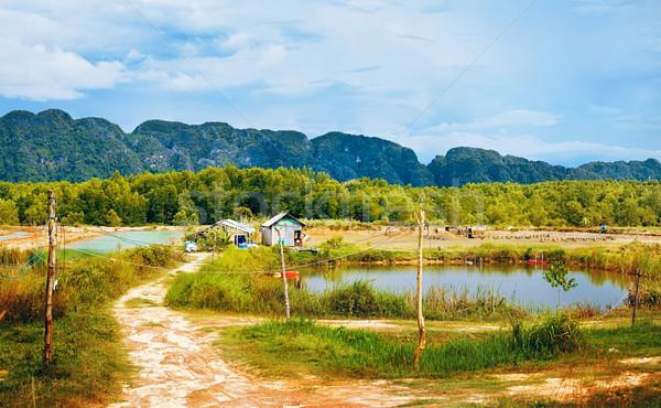 Thai Landscape Stock photo © PetrMalyshev