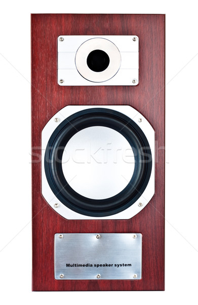 brown speaker system front Stock photo © PetrMalyshev