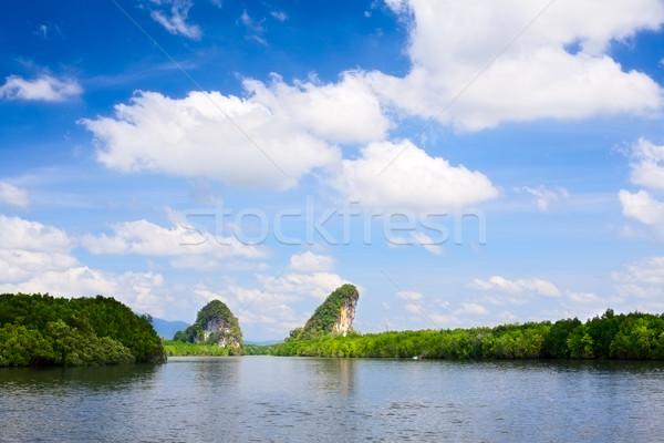 Krabi kayalar uçurum ağaçlar Tayland Stok fotoğraf © PetrMalyshev