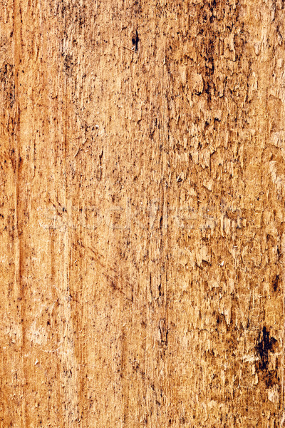 Pinewood Texture Closeup Stock photo © PetrMalyshev