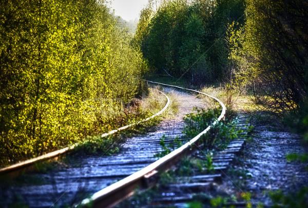 Narrow Gauge Stock photo © PetrMalyshev
