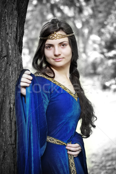 Elf prinses winter bos triest vrouw Stockfoto © PetrMalyshev