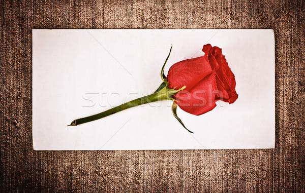 Rood rose brief oude doek envelop sjabloon Stockfoto © PetrMalyshev