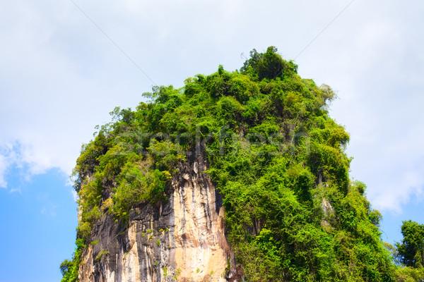 Taylandlı dağlar yeşil ağaçlar krabi Tayland Stok fotoğraf © PetrMalyshev