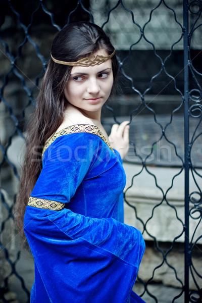 Mittelalterlichen Schönheit Metall Tor Mädchen blau Stock foto © PetrMalyshev