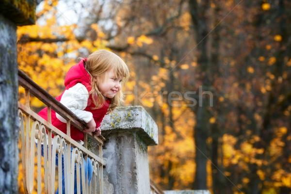 Beautiful Girl in Park Stock photo © PetrMalyshev