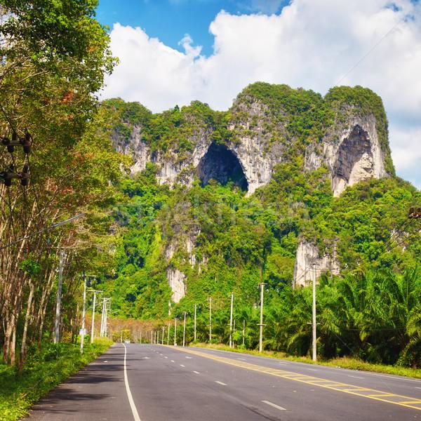 шоссе Таиланд асфальт джунгли Краби небе Сток-фото © PetrMalyshev