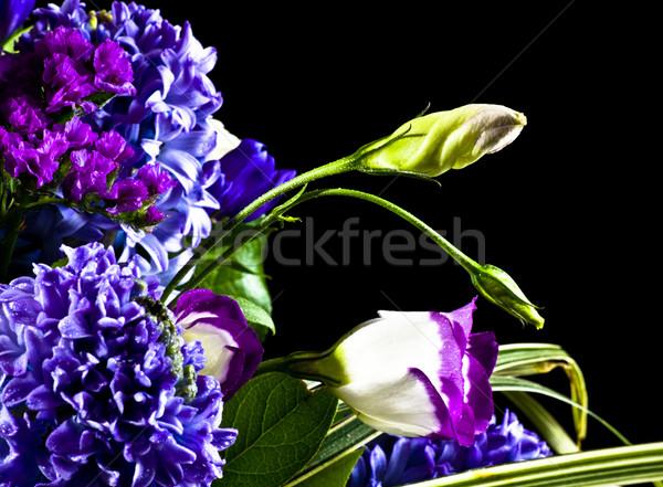 flowers isolated on black Stock photo © PetrMalyshev