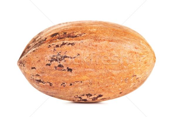 Single Pecan Nut In A Shell Stock photo © PetrMalyshev