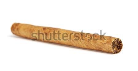 Cigarillos Stock photo © PetrMalyshev