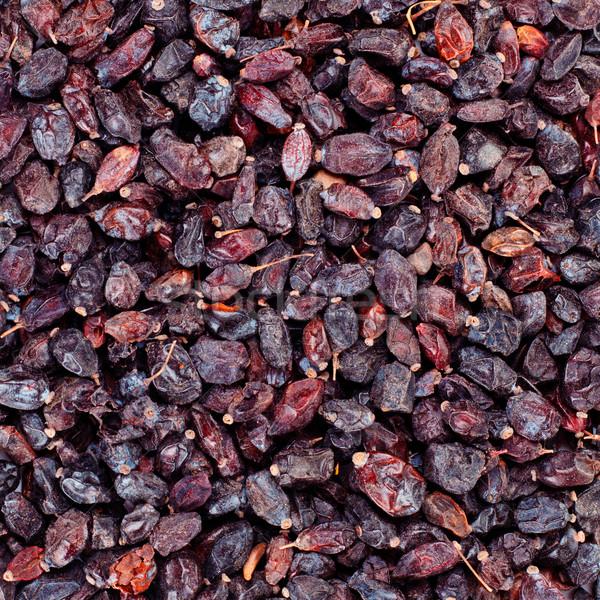 black barberry Stock photo © PetrMalyshev
