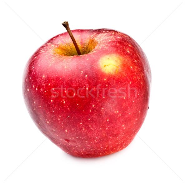 Kırmızı elma taze yalıtılmış beyaz gıda doğa Stok fotoğraf © PetrMalyshev