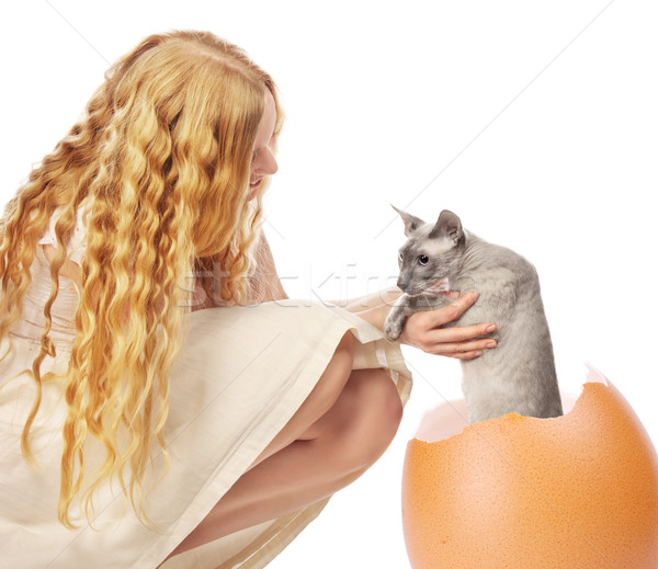 Cat Hatched From Egg Stock photo © PetrMalyshev