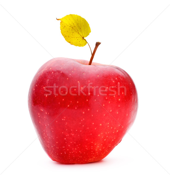 Red Apple Stock photo © PetrMalyshev