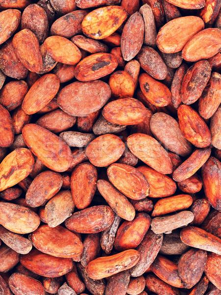 Ruw cacao bonen vers geheel voedsel Stockfoto © PetrMalyshev