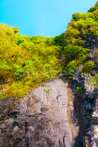 Thai montagnes vert arbres krabi Thaïlande Photo stock © PetrMalyshev