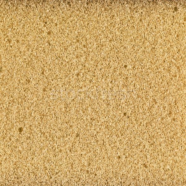 foam rubber texture Stock photo © PetrMalyshev