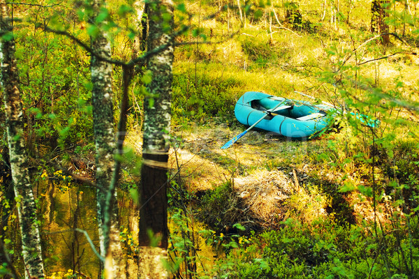 Rubber Boat On The Shore Stock photo © PetrMalyshev