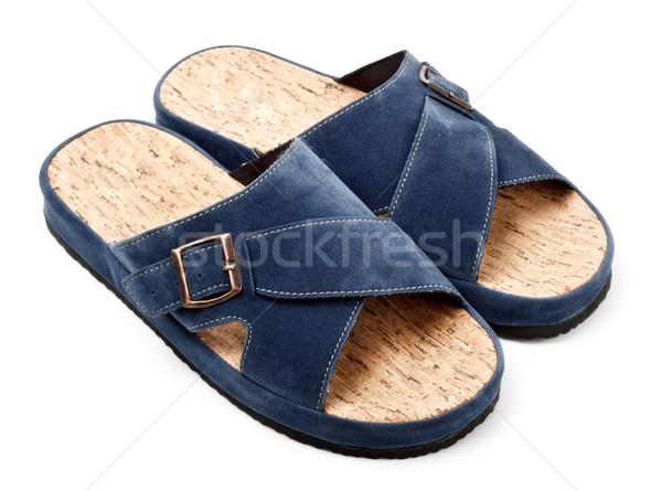 two blue slippers Stock photo © PetrMalyshev