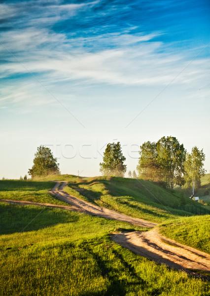Polveroso strada rurale campagna campi estate Foto d'archivio © PetrMalyshev