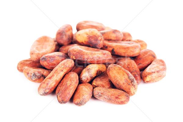 Kakao fasulye yalıtılmış beyaz gıda Stok fotoğraf © PetrMalyshev