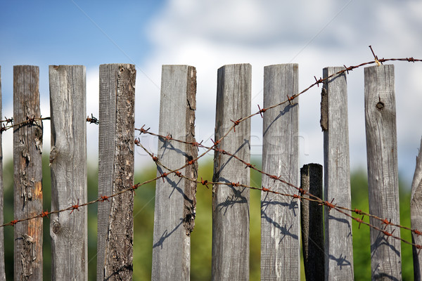 Fence With Barbed Wire Stock photo © PetrMalyshev