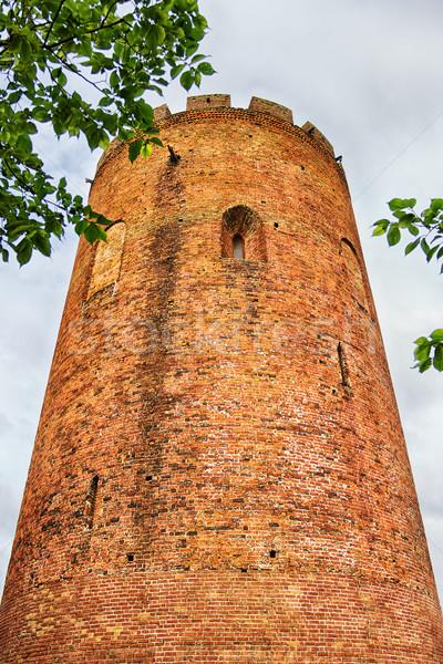Old Tower Castle Stock photo © PetrMalyshev