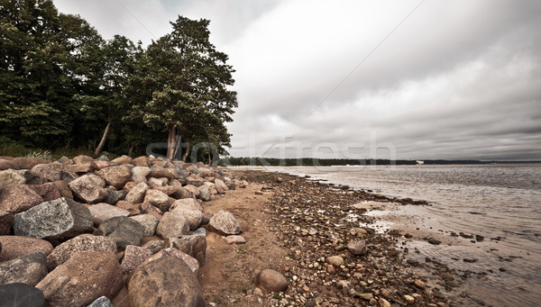 Desolate Rocky Beach Stock photo © PetrMalyshev