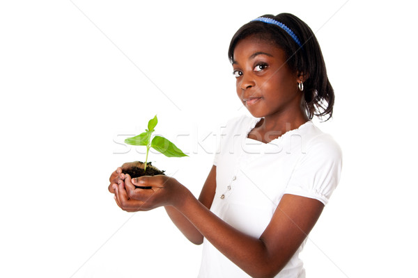 Girl with plant in hand Stock photo © phakimata