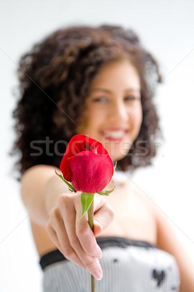 Rose Red sincero bella rosolare Foto d'archivio © phakimata