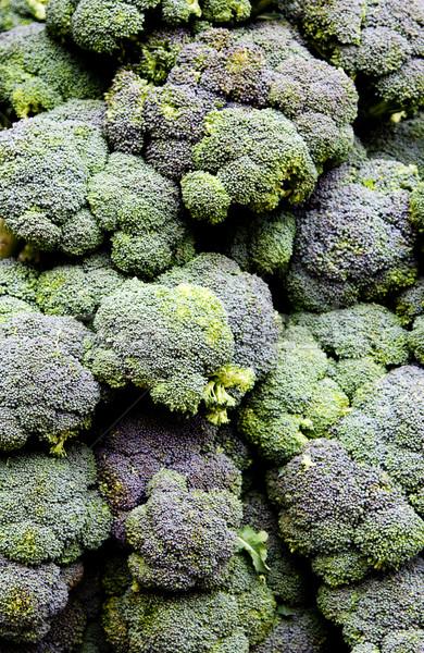 Broccoli calabrese Stock photo © phakimata