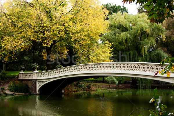 Pont lac automne paysages belle automne Photo stock © phakimata