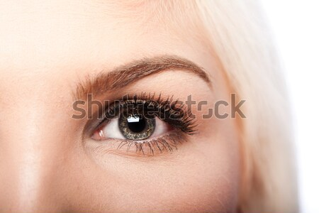 Beauty Eye and eyebrow Stock photo © phakimata