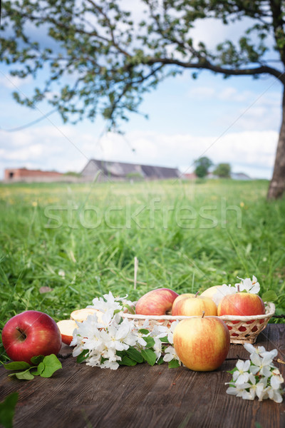 Apples and flowers on a background of green grass Stock photo © Phantom1311