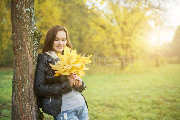 желтый лист клен листьев Сток-фото © Phantom1311