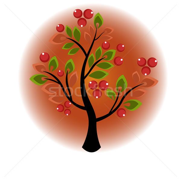 Fa növekvő bogyók levelek cserje levél Stock fotó © Phantom1311