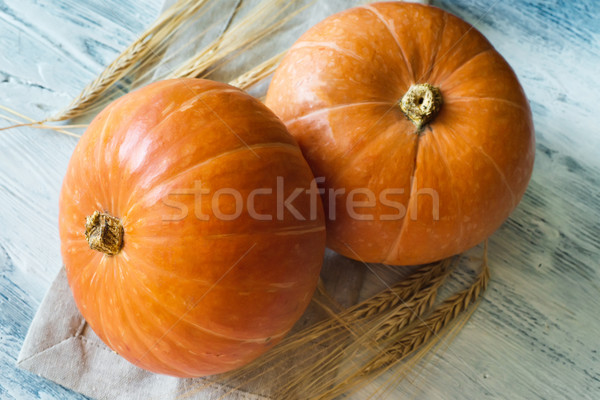 pumpkin on a blue background with shallow depth of field Stock photo © Phantom1311