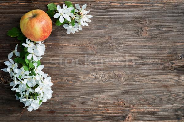 Alma virágok iskolatábla étel növény eszik Stock fotó © Phantom1311